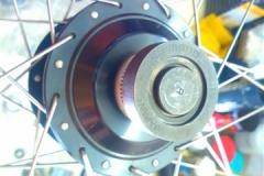WP_009005 (Small)