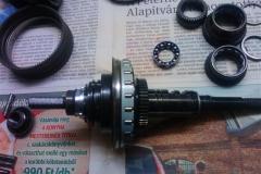 WP_007780 (Small)
