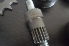 SAM_6501 (Small)